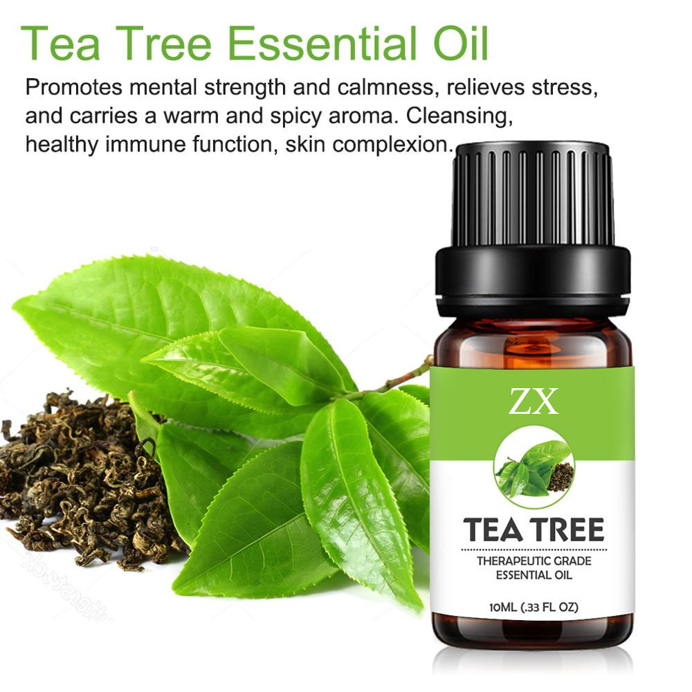 tea tree oil bulk