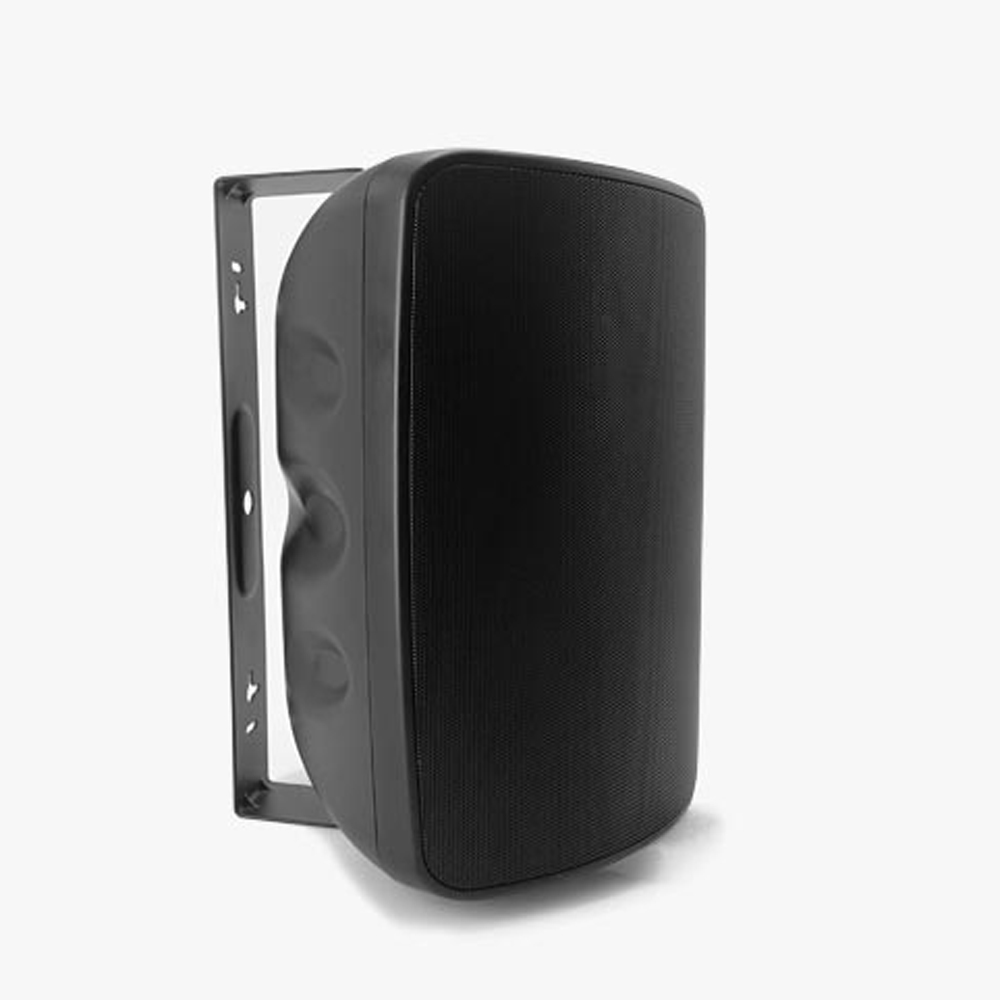 "3/4 ""Dragon Boat Box Series Wall Mount Speaker"
