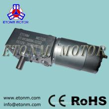12 v 24 v dc motor eléctrico 70 kg.cm cortina eléctrica ángulo recto gusano caja de cambios