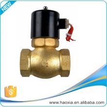 US 2/2 Way 220V AC Pilot-Operated Steam solenoid valve US-15