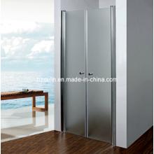 Salle de douche simple Écran de porte Elclosure (SD-305)