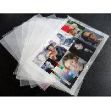 Offset UV Printing Pet Transparent Rigid Sheet