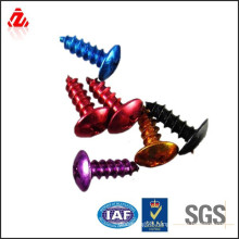 colorful decorative screws