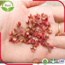 Extracto de pimiento de ceniza espinoso chino / Extracto de cáscara de Pricklyash Bunge / Pericarpio Zanthoxyli