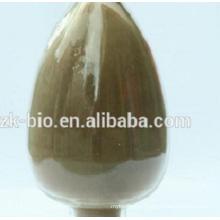 High Quality Organic Polyporus Umbellatus Extract Polysaccharides