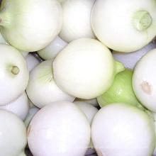 Frische Zwiebel (gelbe Zwiebel und rote Zwiebel)