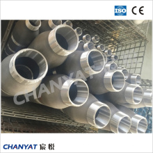 A312 (TP347, TP310H, TP347H) Stainless Steel Pbe/Bbe/Tbe Ecc. Pipe Nipple