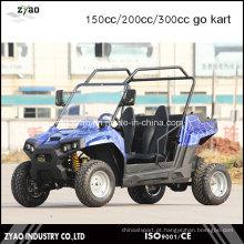 Vá Kart diferencial 150cc em veículo do deserto