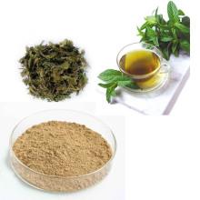Extracto del té verde, extracto del té negro, extracto del té de Oolong, té verde inmediato, té oscuro inmediato