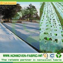 Tissu non-tissé de pp de couverture d'agriculture anti-UV dans le petit pain