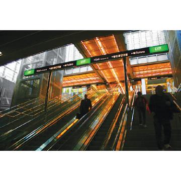 FUJI Escaleras mecánicas de 35 grados