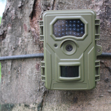 Wide Angle PIR Animal Detect Trail Camera