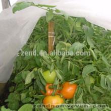 Estufa artrural não tecida dos PP para o vegetal