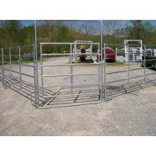 40′iron Pipe Horse Barn