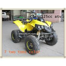 Дисковый тормоз ATV, 125CC ATV (ET-ATV048)