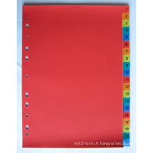 20 pages couleur PP Index diviseur avec numéro imprimé (BJ-9025)