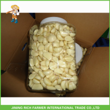 2015 new crop peeled garlic ,dehydrated garlic,garlic cloves