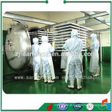Secadora de congelação industrial de tipo FDG