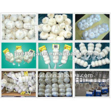 2013 garlic price