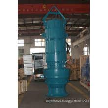 Vertical Axial Water Pump