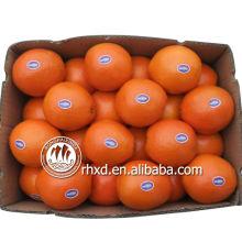 название всех желтых фруктов Апельсин мандарин лимон цитрусовые