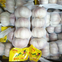 Normal White Garlic Packed with 200g