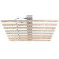 600W LED Grow Light per piante da interno