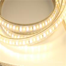 High brightness 110v 120v 230v led strip with dimmable controller 5050 smd 60leds/m strip light for Landscape lighting