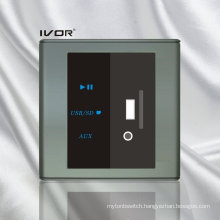 MP3 Decoder Switch Plastic Material (SK-AP2301)