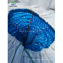 Cheap Blue PP/Polypropylene/Plastic/PE/Fishing/Marine/Mooring/Twist/Twisted Danline Rope for Philippines