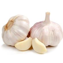 Export Packed in 10kgs in Carton Mesh bag Fresh Normal White Garlic