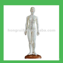 "Mensch Akupunktur Punkte Modell, 19 ""Frau Körper Modell"