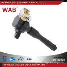 Factory price 12v oem NEC000040 NEC101010L NEC101000 LR022494 ignition coil for small engine for MG