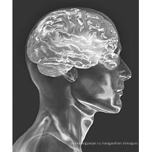 (Цитиколин натрия) -лечение заболеваний головного мозга КАС 33818-15-4 Цитиколин натрия