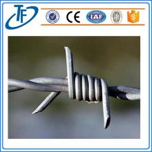 Usine de fil torsadé en acier au carbone