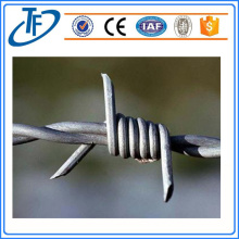LOW Carbon Steel Twisted Wire Factory