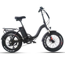 Hot Sale Ebike Shimano External 7 Speed Folding Electric Bicycle