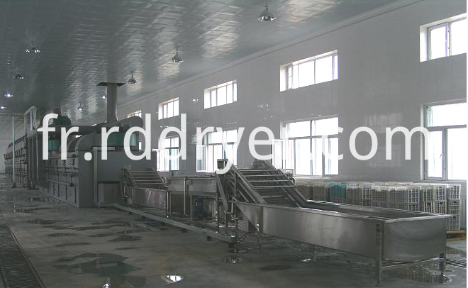 Dw Series Food Belt Dryer / Industrial Fruit Dryers