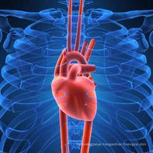 Maintenance of Heart System Taurine