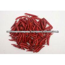 s17 chilli new crops