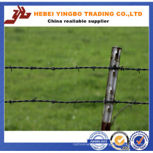 Playground /Field /Farm Fence Protective Barbed Wire