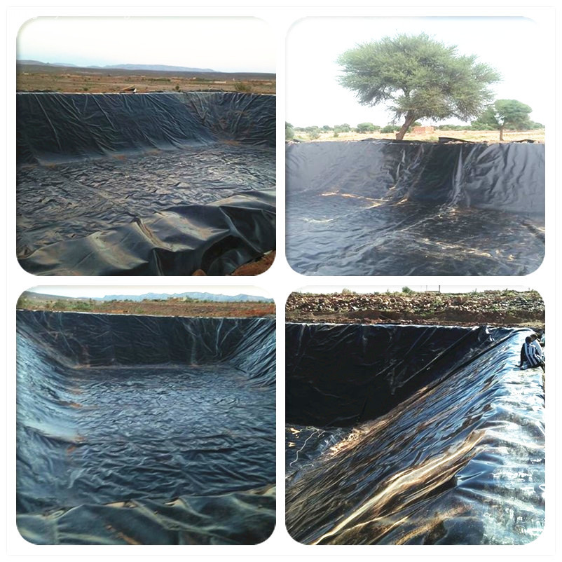 HDPE Liner for Fish Pool