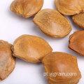 Atacado de produtos agrícolas nozes naturais de caroço de damasco