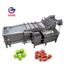 Machine à laver la date pour la ceinture de machine à laver les aliments