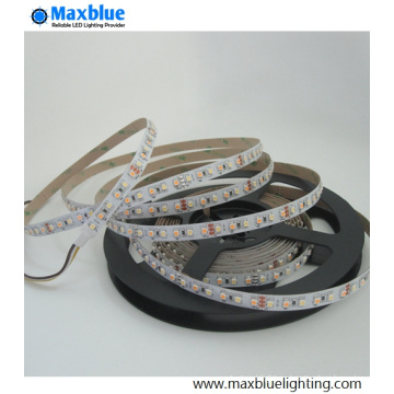 DC12V 120LED / M CCT ajustable SMD3528 LED tira