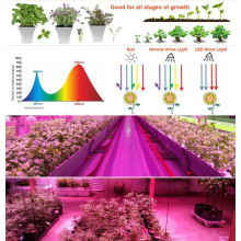 Veg / Bloom Hydroponic Systems LED wachsen leicht