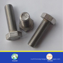 Stainless Steel 18-8 Hex Bolt