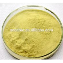 Polvo orgánico de la planta Polvo / extracto orgánicos de la seta de Shiitake