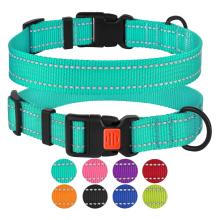 Reflektierendes Hundehalsband mit Schnalle