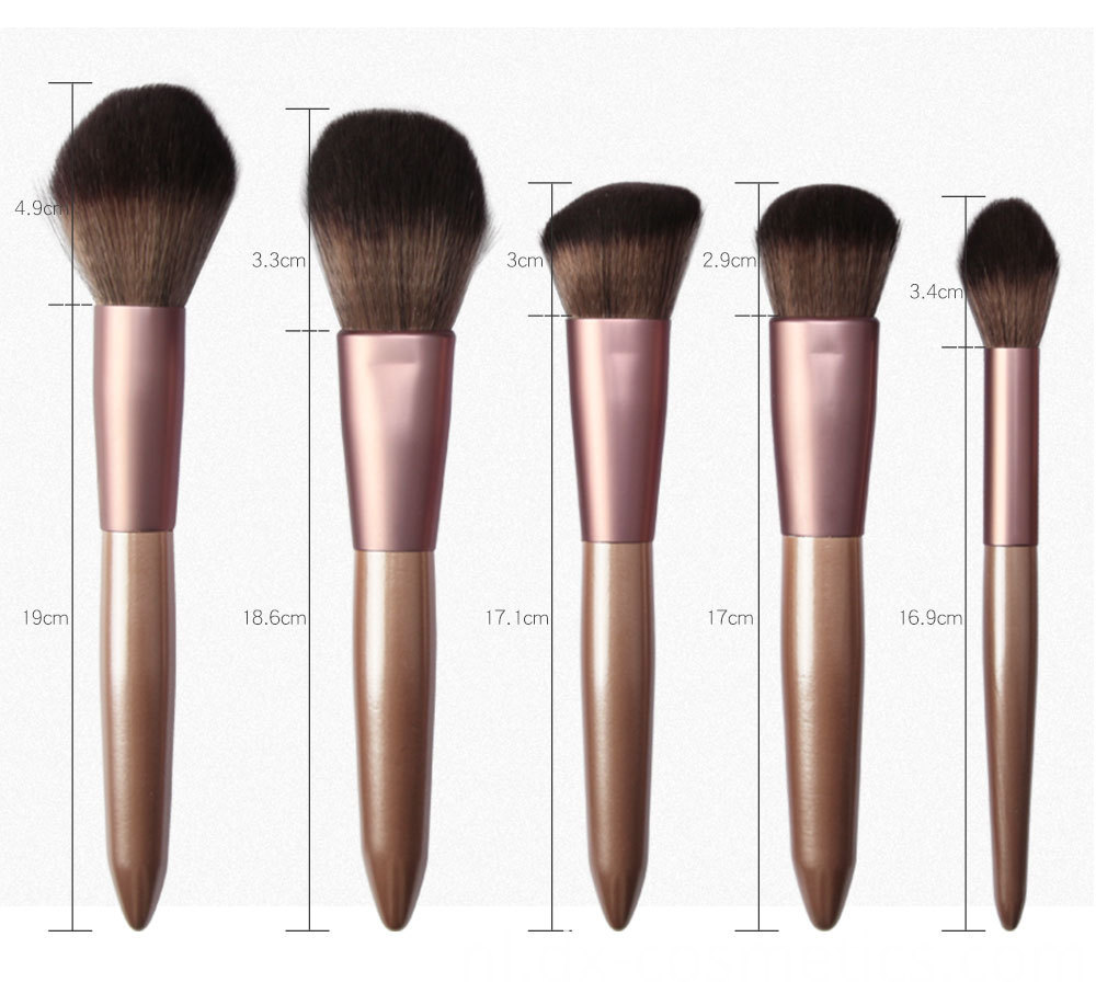 12 Pieces Grapelet Makeup Brush Set Hot6